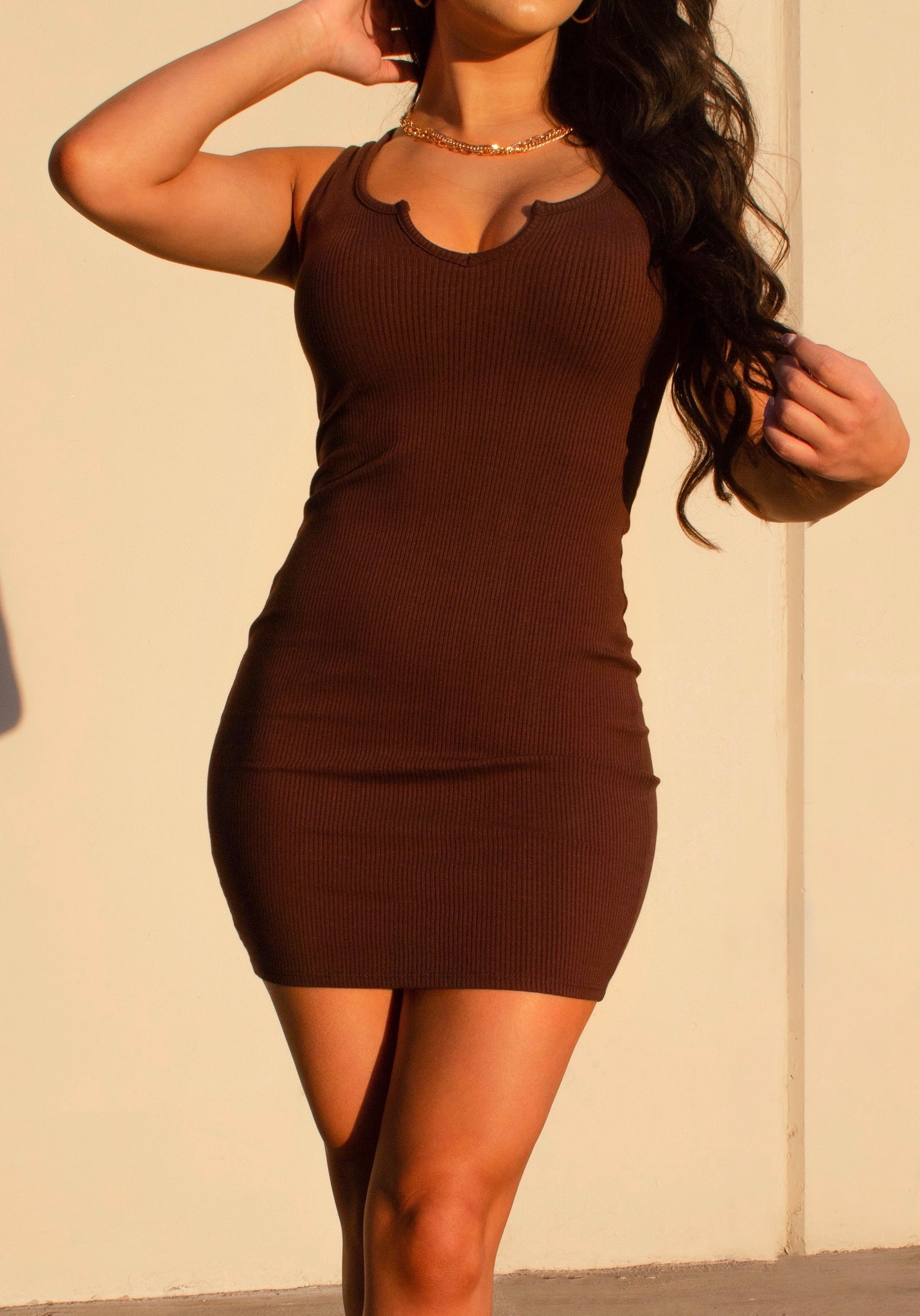 Malerie Dress (brown)