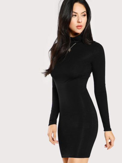 Turtle Neck Form Fitting Solid Dress