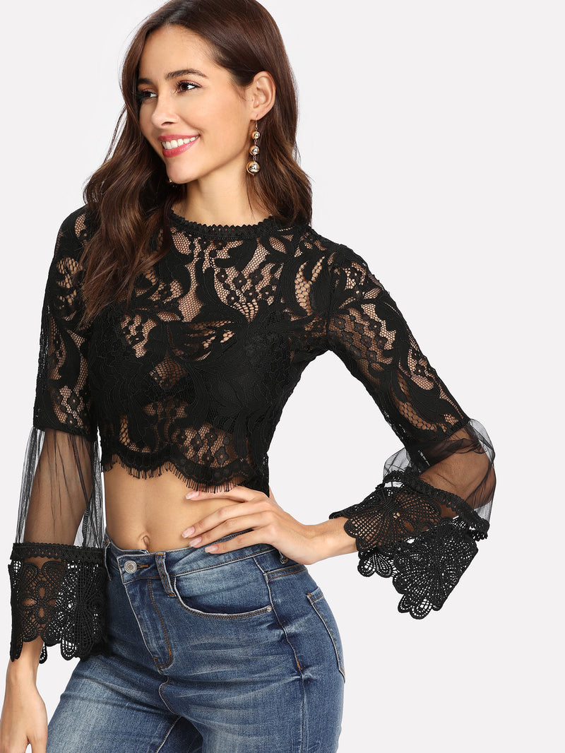 Mesh Panel Eyelash Lace Crop Top