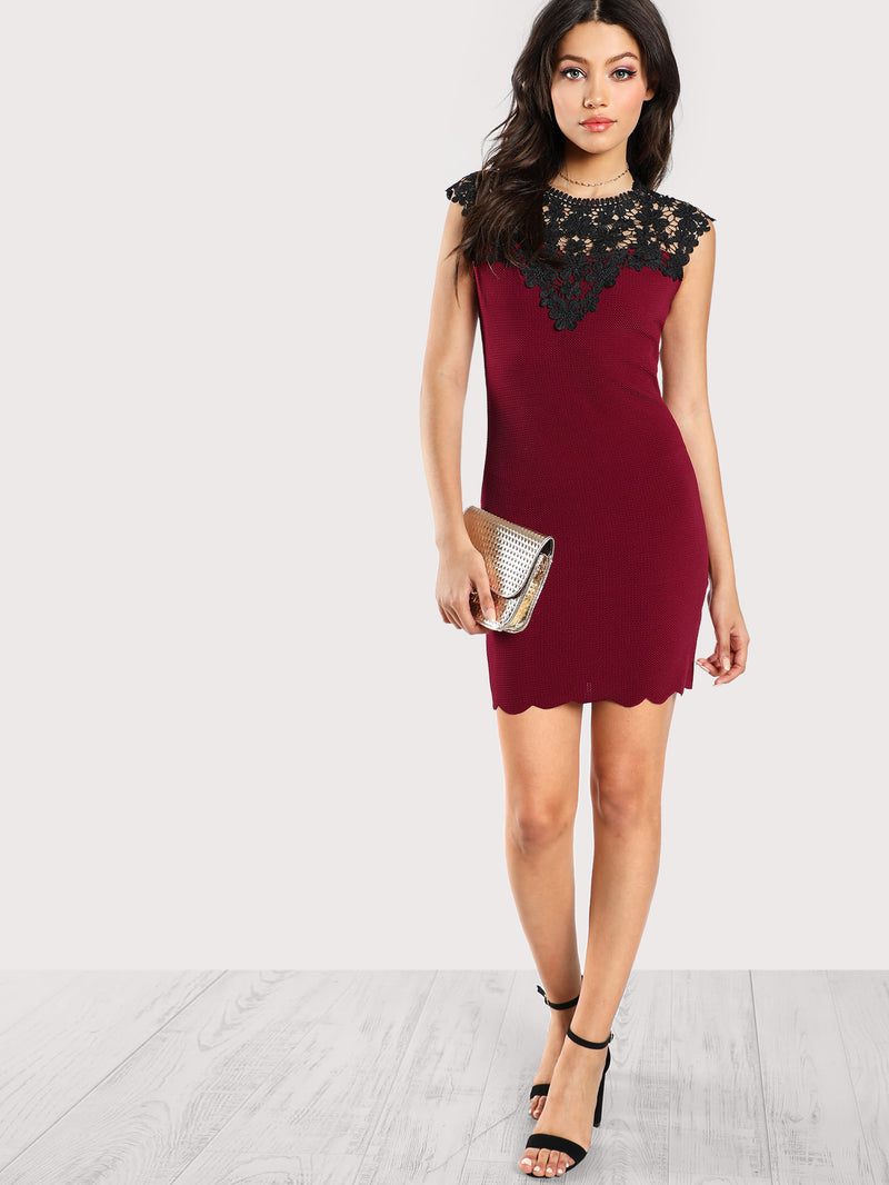 Contrast Guipure Lace Shoulder Fitted Dress