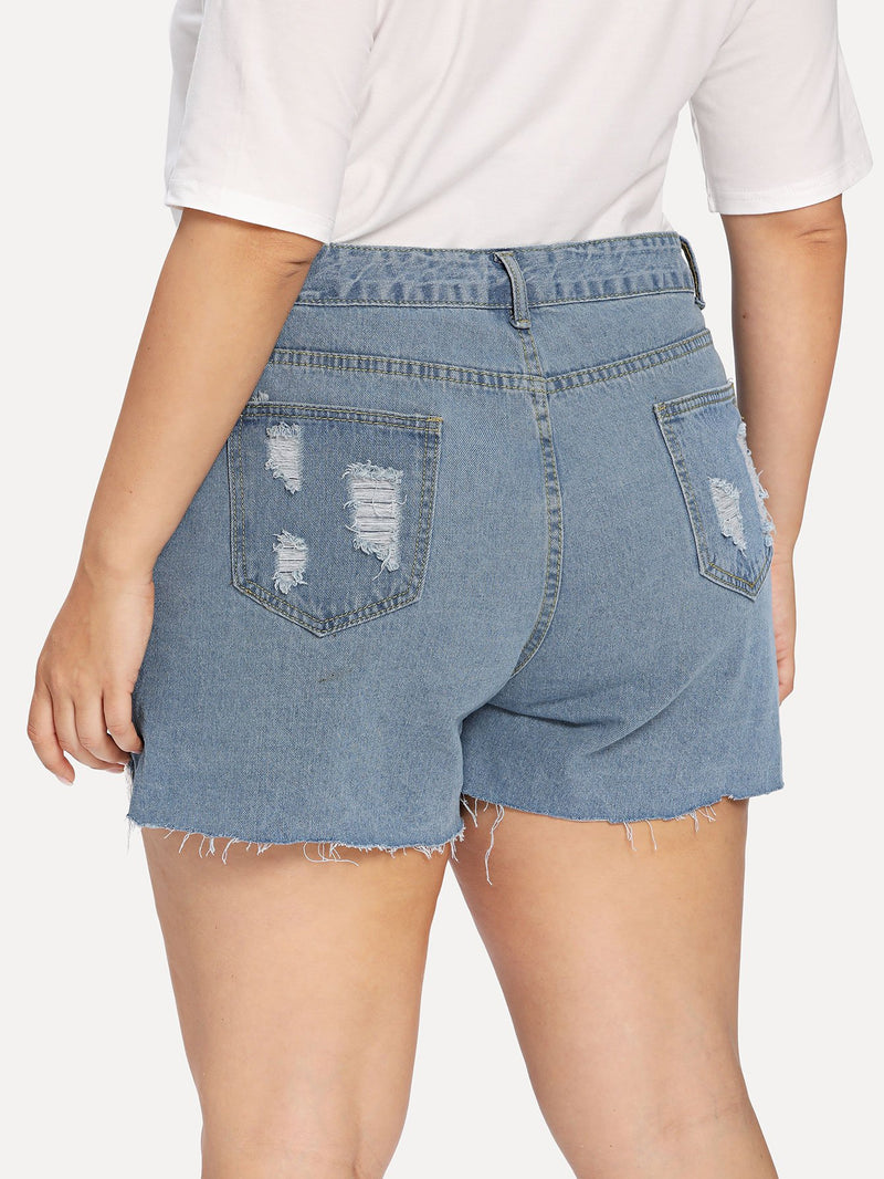 Embroidered Mesh Insert Distressed Denim Shorts