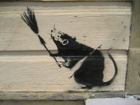 https://cdn.shopify.com/s/files/1/2070/1789/files/Banksy-rat-with-broom-new-orleans1_large.jpg?v=1512691006