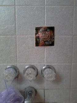 "Bathroom Shower Tile with Turtle Relief Design 6"" x 6"" $80.00 TI26"