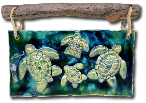 "Turtle Wall Art w/Driftwood 12.5""x17.5"" DW09 $345.00"