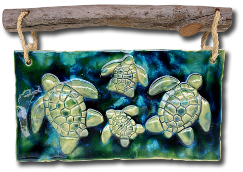 Turtle Wall Art w/Driftwood DW09
