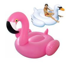 Inflatable Flamingo or Swan For Adult