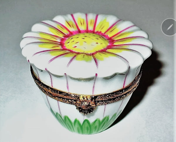 Daisy: White Limoges Box