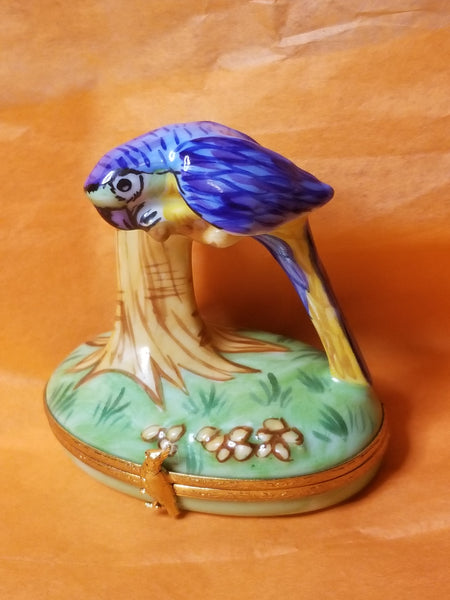 Blue Macaw Limoges Box