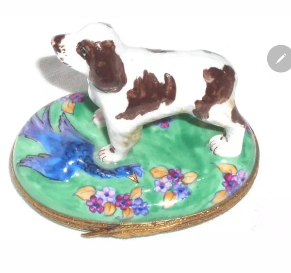 Springer Spaniel Limoges Box