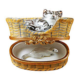 Dreaming Cat-Mouse Inside Limoges Box