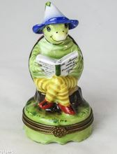 Turtle Reading - RARE RETIRED - 3 Extra Days to Ship