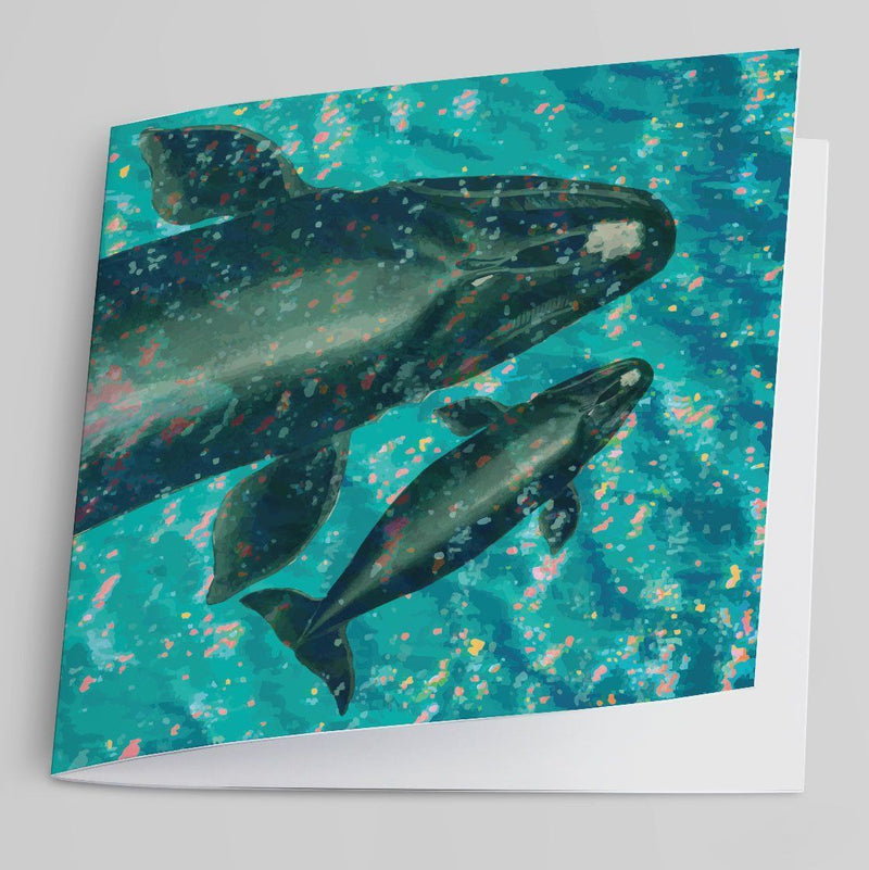 Southern Right Whales (Aerial View) Greeting Card-Greeting Card-Tony Pinchuck-Tony Pinchuck