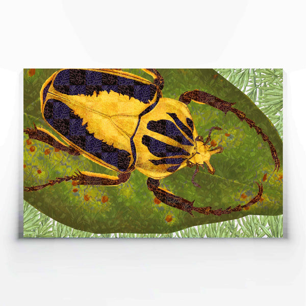 Beetle Canvas Print-Canvas Prints-Tony Pinchuck-Medium (100 x 60 cm/ 40 x 24 in)-Tony Pinchuck