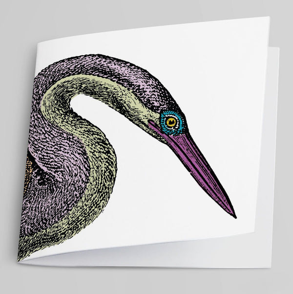 Darter-Greeting Card-Tony Pinchuck-Tony Pinchuck