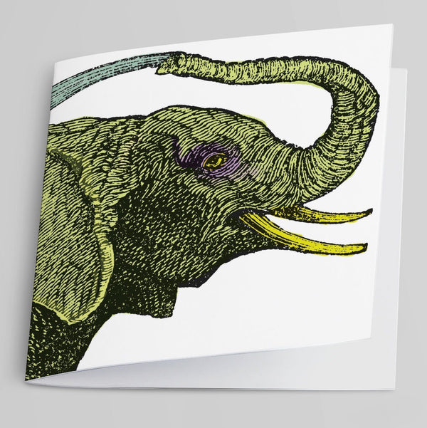 Elephant-Greeting Card-Tony Pinchuck-Tony Pinchuck