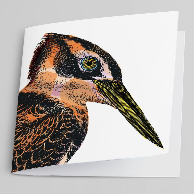 Kingfisher-Greeting Card-Tony Pinchuck-Tony Pinchuck