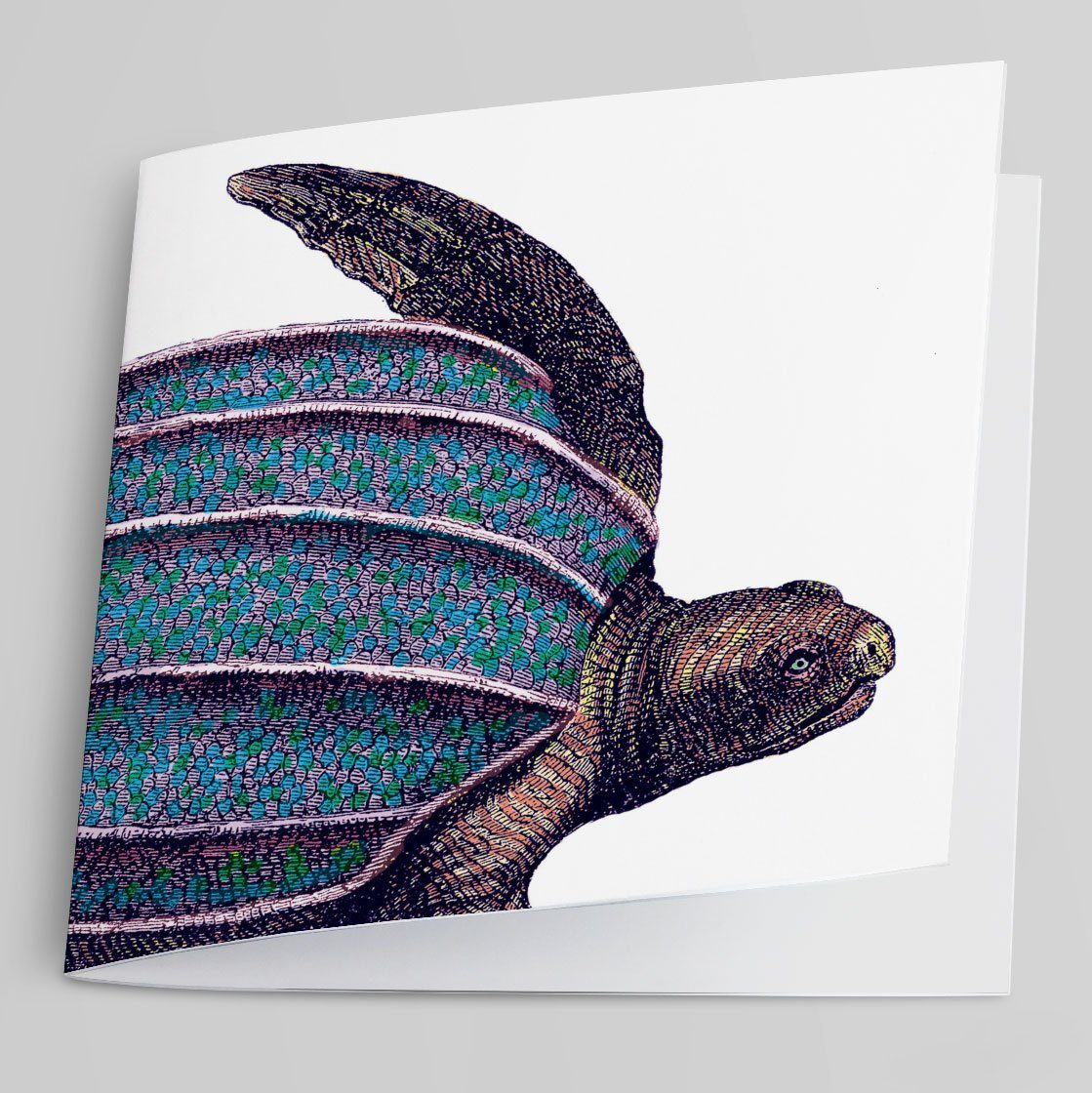 Turtle Greeting Card-Greeting Card-Tony Pinchuck-Tony Pinchuck