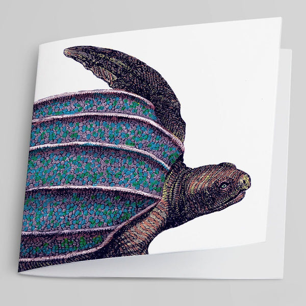 Turtle-Greeting Card-Tony Pinchuck-Tony Pinchuck