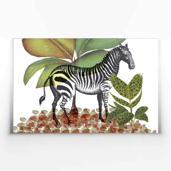 Zebra Canvas Print-Canvas Prints-Tony Pinchuck-Large (130 x 80 cm/ 52 x 32 in)-Tony Pinchuck