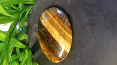 Tiger Eye - TE3