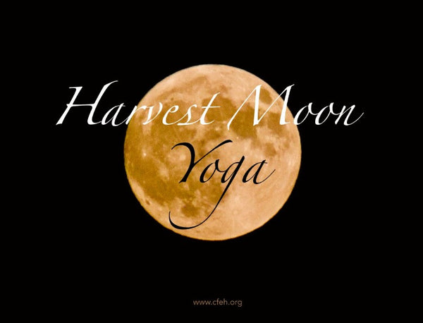 Harvest Moon Yoga and  Drum Meditation with Denise