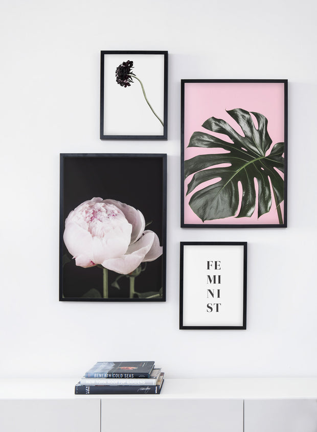 Scandinavian poster by Opposite Wall with trendy Monstera leaf photo on pink background - Up Close - Living room bookshelf