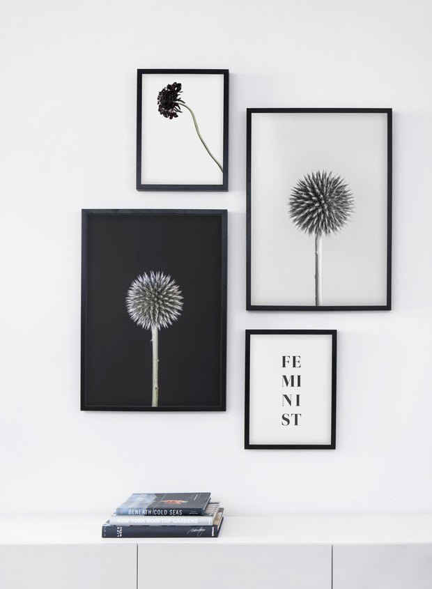 Scandinavian art print by Opposite Wall with Silver White Thistle art photo - Living room bookshelf