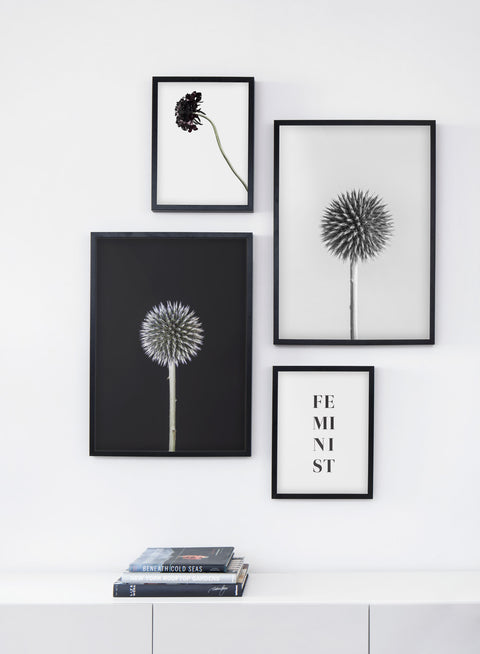 Scandinavian poster by Opposite Wall with Silver Thistle black and white art photo - Living room bookshelf