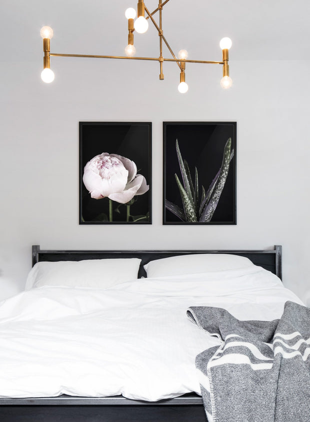 Scandinavian art print by Opposite Wall with Aloes art photo in black