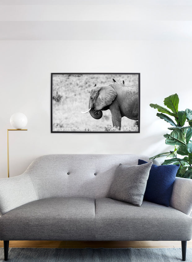 Black and white elephant modern minimalist photography poster by Opposite Wall - Gallery Wall - Cozy living room