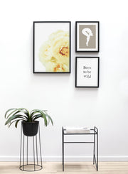 Minimalist wall art poster trio featuring yellow blooms floral photography - Table and Plant