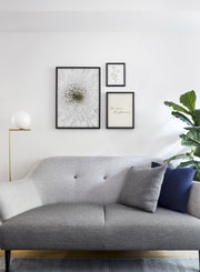 Minimalist wall art poster trio featuring white gerbera daisy flower photography - Living Room