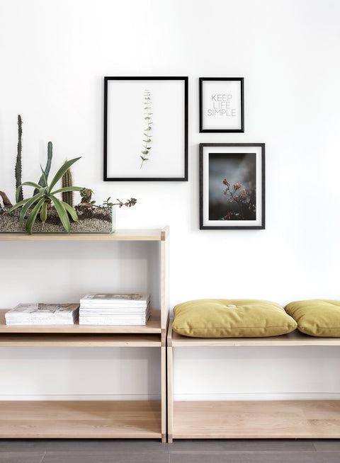 Minimalist wall art poster trio featuring classic stem eucalyptus botanical photography - Entryway