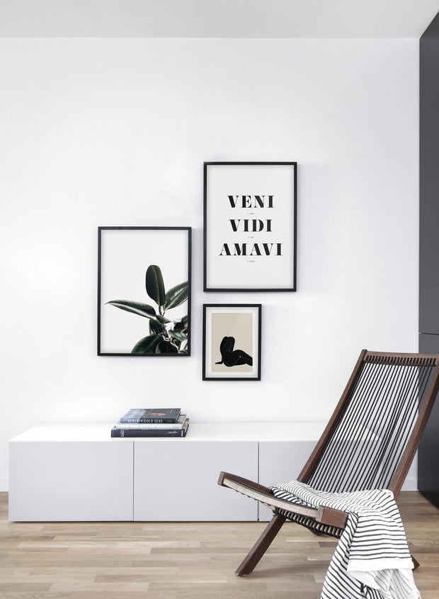 Minimalist wall art poster trio featuring Rubber Tree botanical photography - Living Room