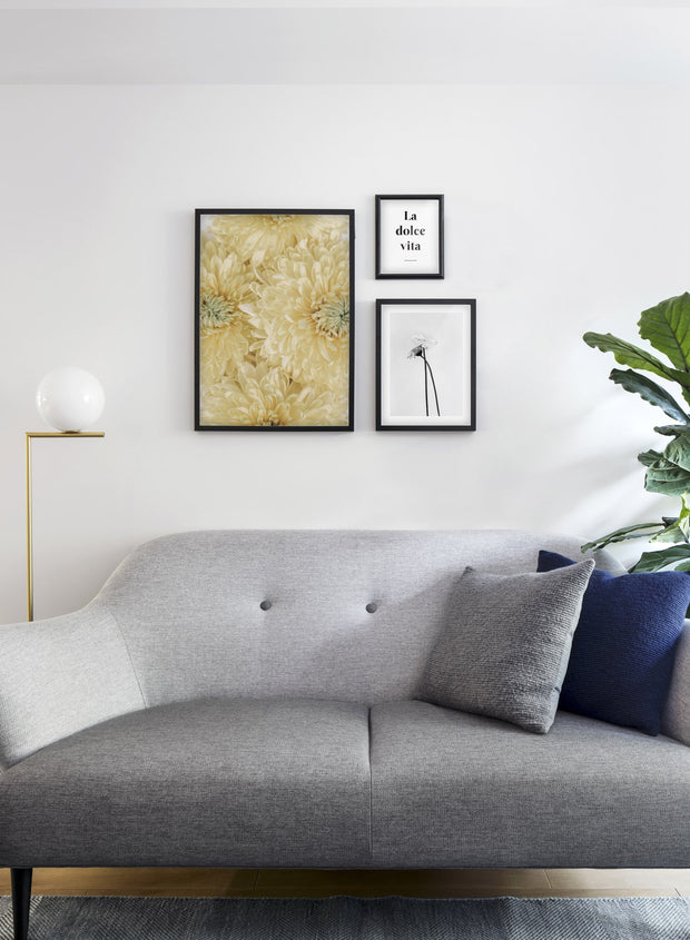 Minimalist wall art poster trio featuring yellow chrysanthemums floral photography - Living Room