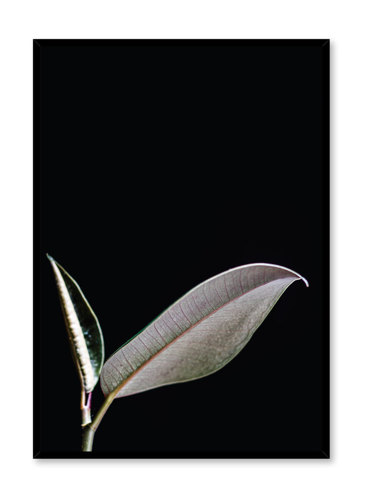 Minimalist art print by Opposite Wall with modern Leaf art photography