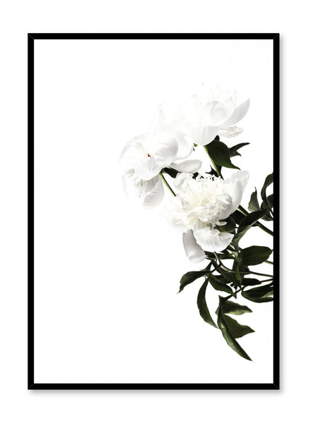 Minimalist art Daylight poster by Opposite Wall with botanical photography