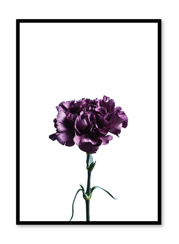 Scandinavian poster by Opposite Wall with trendy Deep Royal purple flower photography
