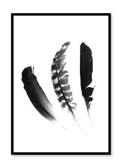 Minimalist black and white photography poster by Opposite Wall featuring a Chic Trio of feathers