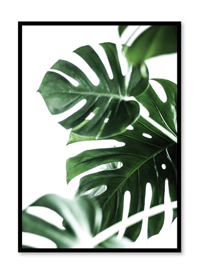 Modern minimalist art print by Opposite Wall with Monstera leaves art photo design