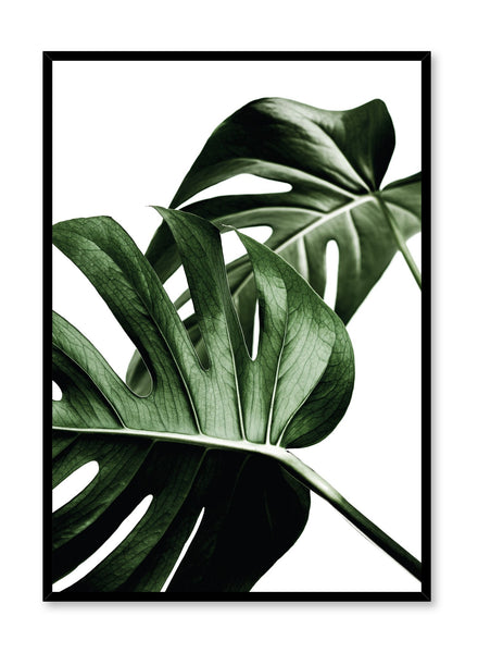 Scandinavian poster by Opposite Wall with trendy with Monstera leaf Overlap