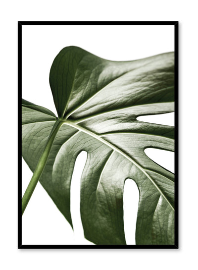 Scandinavian art print by Opposite Wall with Widespread Wonder art photo of Monstera leaf