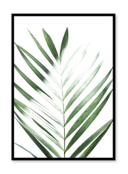 Modern minimalist poster by Opposite Wall with Sunlight palm leaf photo art