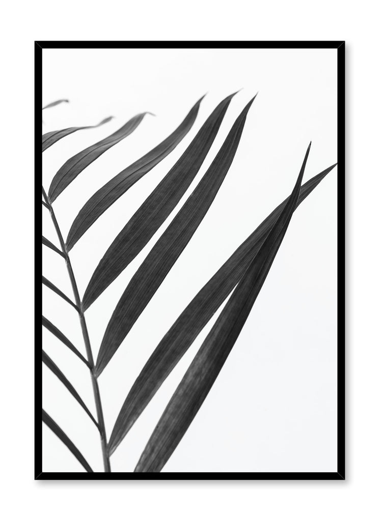 Minimalist Black and White Palm Photography Poster by Opposite Wall