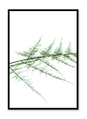 Scandinavian poster by Opposite Wall with trendy Gentle on Eyes fern branch photography