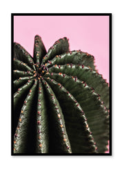 Scandinavian art print by Opposite Wall with trendy cactus photography