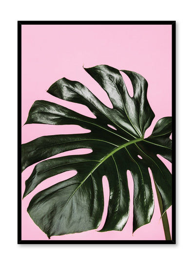 Scandinavian poster by Opposite Wall with trendy Monstera leaf photo on pink background - Up Close