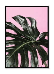 Scandinavian art print by Opposite Wall with Pink Deliciosa monstera art photo