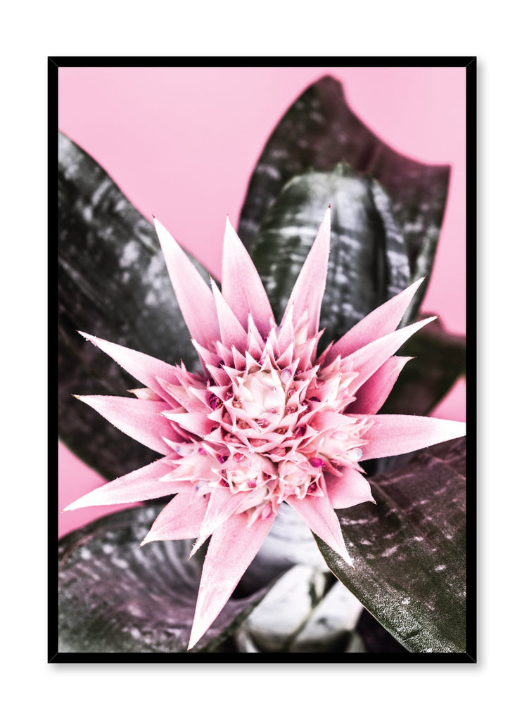 Modern minimalist poster by Opposite Wall with Cactus Flower photo