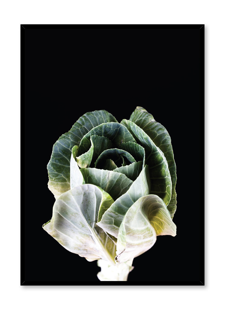 Scandinavian poster by Opposite Wall with Cabbage flower photography on black
